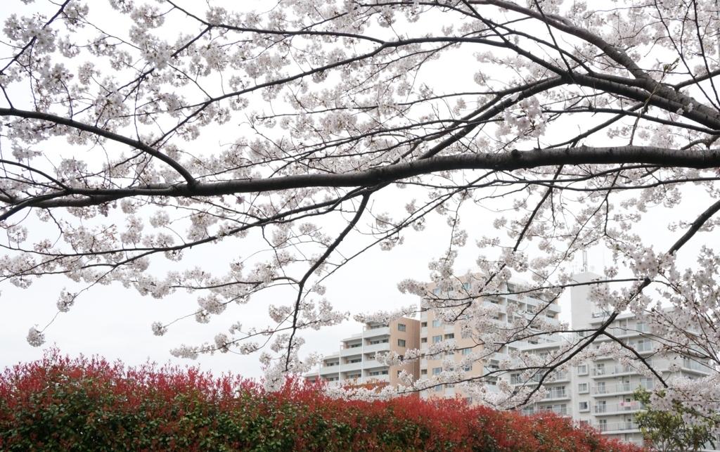 f:id:murakoshi5:20170730031941j:plain